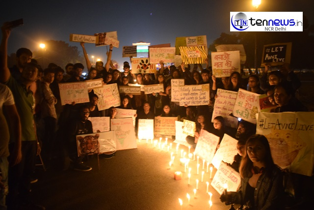 """""""Save Avni the Tigress"""", A Candle March Prayer at India Gate"""