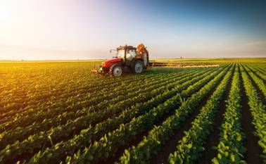 agr-minister-appeals-farmers-to-insure-crops-by-july-31-pmfby-for-kharif-2020-on-full-swing-english