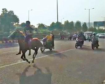 horse-rase-expressway__1149067063