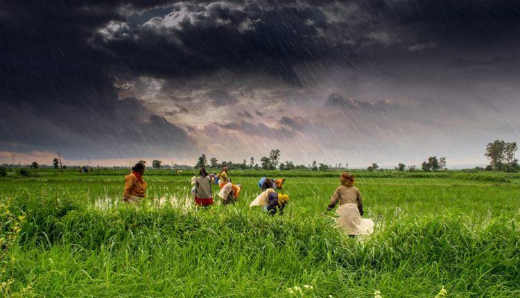 Monsoon-farmers